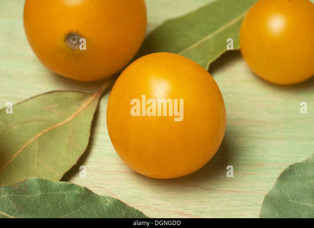 Yellow grape tomato close up - Stock Image