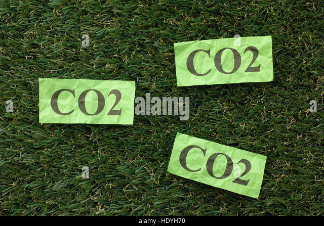 Carbon Dioxide Cloud (CO2) on a green grass. Concept image. Close up. - Stock Image