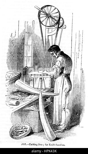 CUTTING IVORY FOR HANDLES about 1850 - Stock-Bilder