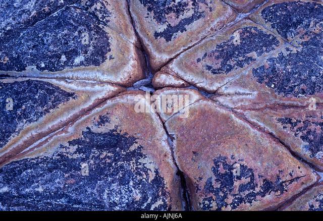 Inter tidal rock shelf, Australia - Stock Image