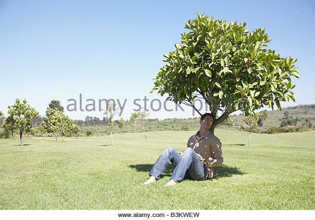 Man sitting in shade under tree - Stock Image