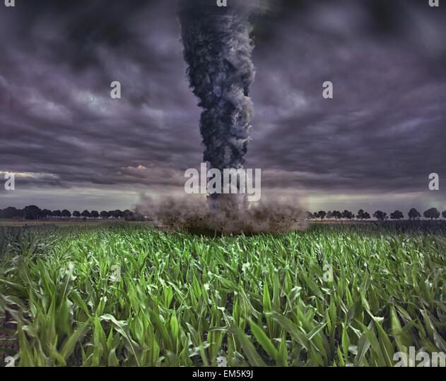 large tornado - Stock Image