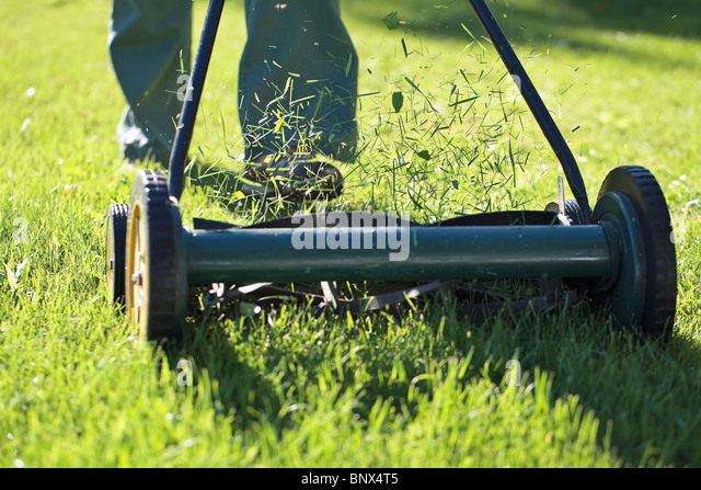Cutting grass with an environmentally friendly lawn mower. - Stock Image