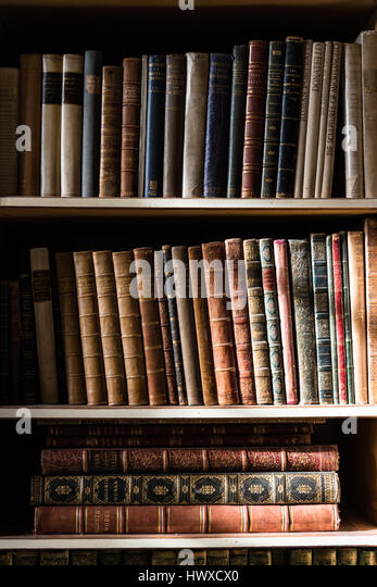 The light of the window on some bookshelves full of books - Stock Image