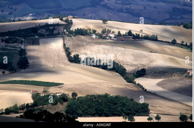 The rolling cultivated landscape of the Le Marche province Italy - Stock Image
