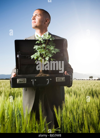 businessman holding a briefcase with a tree in it - Stock Image
