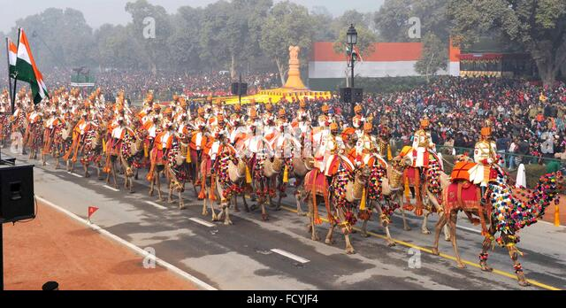 New Delhi, India. 26th January, 2016. The Indian Border Security Force Camel corps parade down Rajpath during the - Stock Image