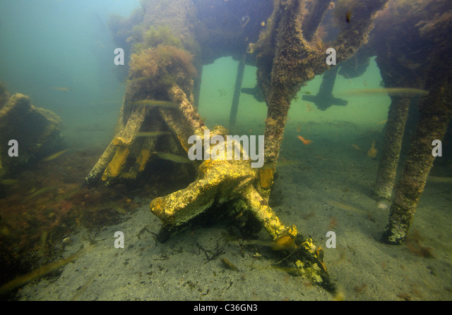 Wreckage of the engine of the Ilsenstein, one of the blockships on the seabed at Churchill Barrier No.2, Scapa Flow, - Stock Image