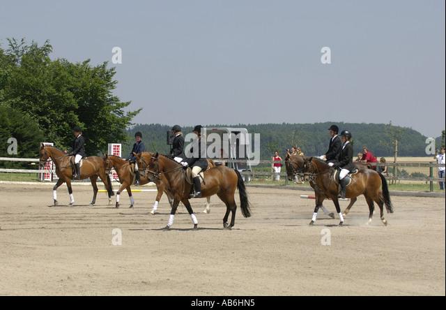 dressage show jumping paddock - Stock Image