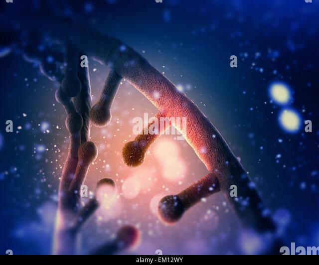 DNA molecule - Stock Image