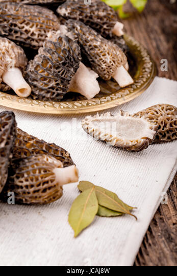 Fresh morchella conica from woods, prepared for cooking. Seasonal mushrooms. - Stock Image