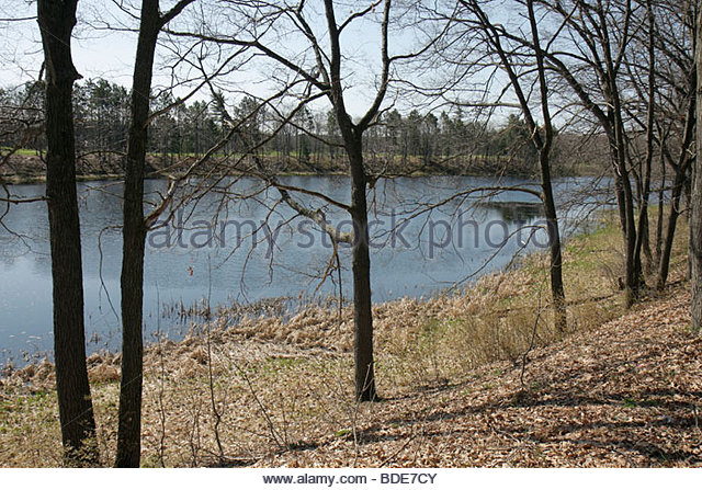 Michigan Gaylord I-75 interstate highway rest stop early spring pond trees bare branches - Stock Image