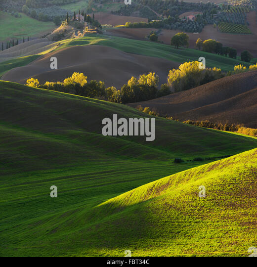 Colorful spring rural landscape in Tuscany, Italy - Stock Image