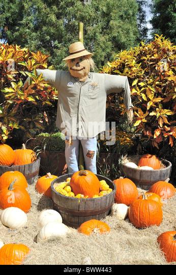 Gatlinburg Halloween