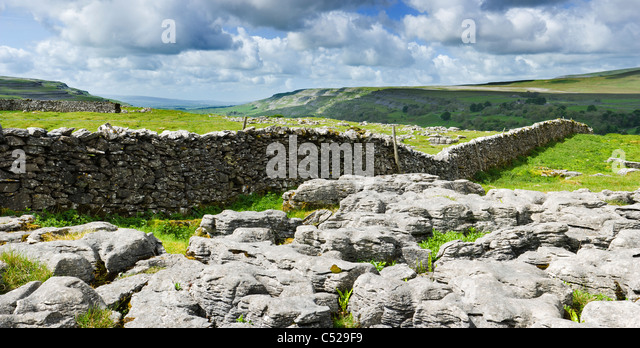 Limestone pavement at Chapel-le-Dale, Yorkshire Dales, UK. - Stock Image