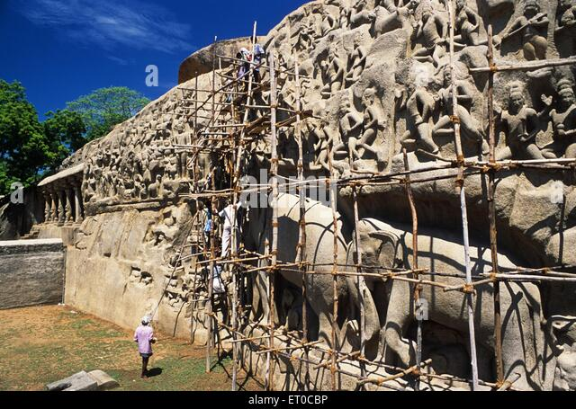 Cleaning process of bas relief arjunas penance in Mahabalipuram Mamallapuram ; Tamil Nadu ; India - Stock Image