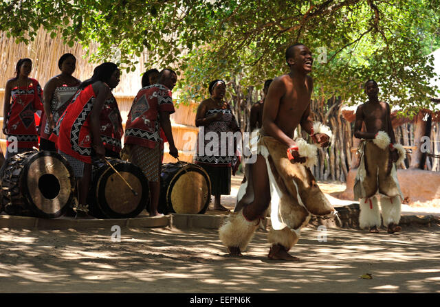Male Swazi dancer in warrior dress performing traditional dance with musicians and singers Matsamo Swaziland Cultures - Stock-Bilder