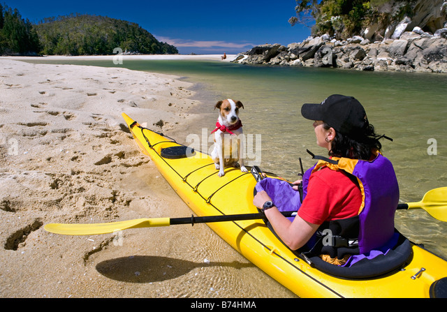 New Zealand, South Island, Abel Tasman National Park. Kayaking in lagoon. Woman and dog. - Stock Image