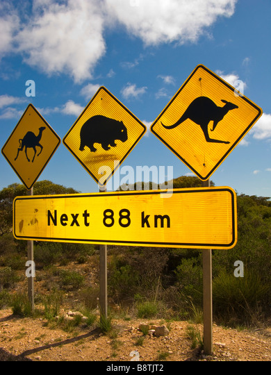 Famous signpost on the Nullarbor - Stock Image
