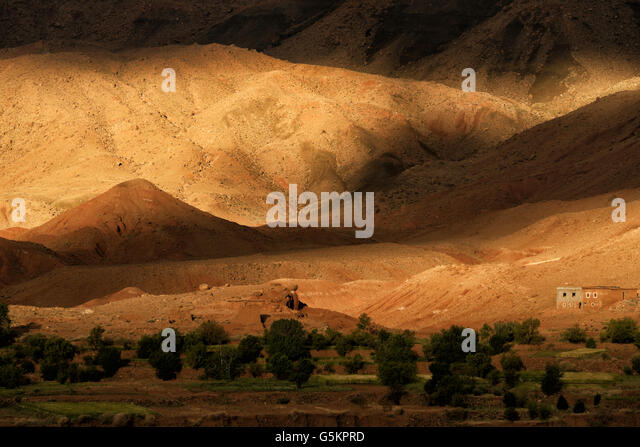 Morning glory in the High Atlas Mountains, Morocco. - Stock Image