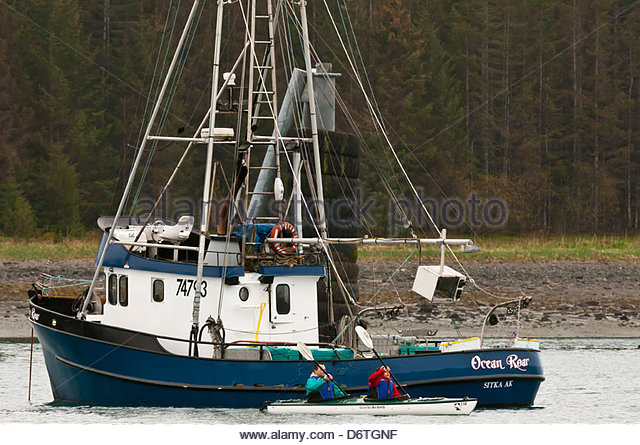 Kayakers (Glacier Bay Sea Kayaks) at Barlett Cove, Glacier Bay, near Gustavus, southeast Alaska USA - Stock Image