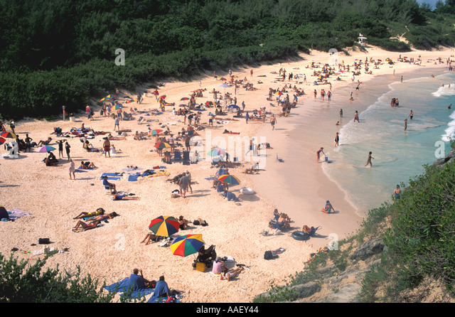 Bermuda pink sand beach tourists sun bathing beside water - Stock Image