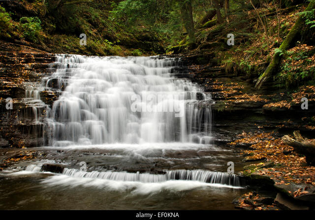 Waterfall landscape at Salt Springs State Park in Franklin Forks Montrose Susquehanna County Pennsylvania, USA. - Stock Image