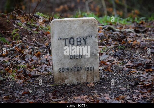 Pet Cemetery Stock Photos & Pet Cemetery Stock Images - Alamy