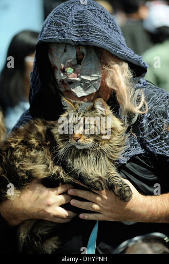 Zombie and cat in the inaugural Zombie Walk, Perth, Western Australia - Stock Image