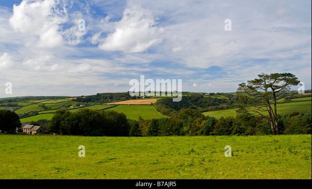 Escorts in north tawton