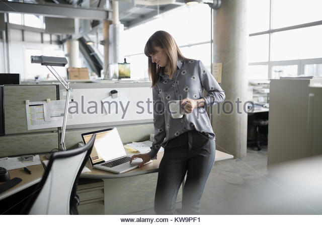 Businesswoman with coffee standing and working at laptop in office cubicle - Stock Image