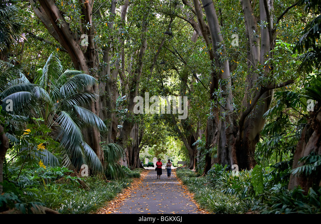 Adelaide stock photos adelaide stock images alamy for Landscape gardeners adelaide