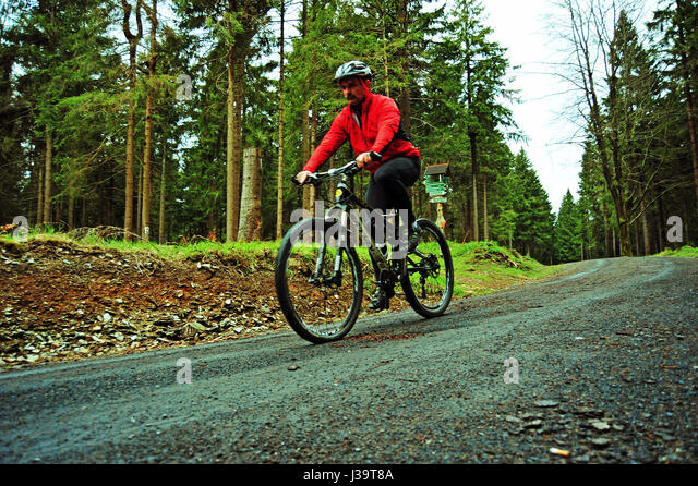 MTB Flow, Thuringian Forest, Germany - Stock-Bilder