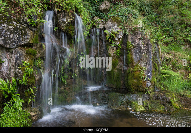 Fresh water flowing from a spring in woodland near Cork in Ireland. - Stock Image