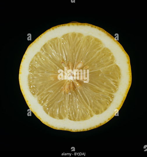 Cut section of a citrus fruit lemon variety Ponderosa - Stock Image