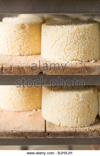 Graukäse (Tyrolean grey cheese) stored on wooden shelves - Stock Image