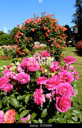 Municipal Garden Stock Photos Municipal Garden Stock