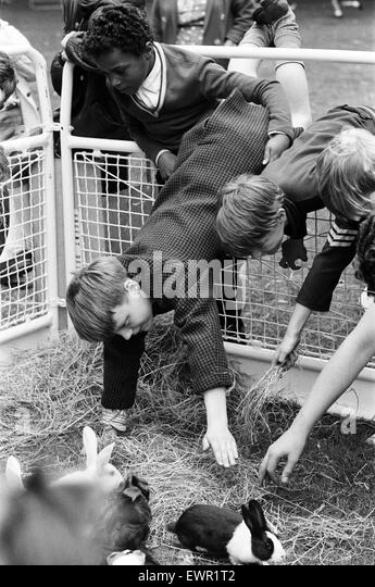 The first travelling Pets Corner opens at Finsbury Park. It is organised by the Greater London Council Parks Department - Stock Image