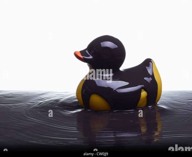 Rubber duck covered in oil - Stock Image