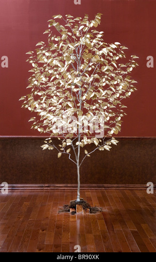 Tree with golden leaves growing out of the floor in a room. - Stock Image