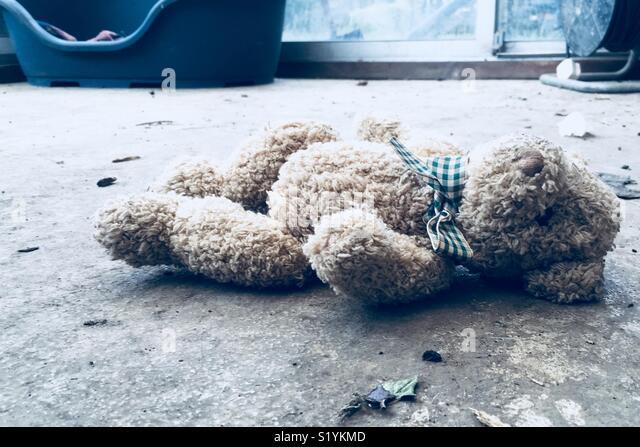 Discarded teddy bear - Stock Image