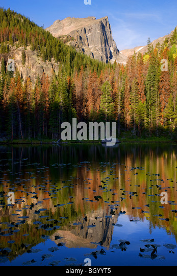 Nymph Lake, Rocky Mountain National Park, Colorado. - Stock Image