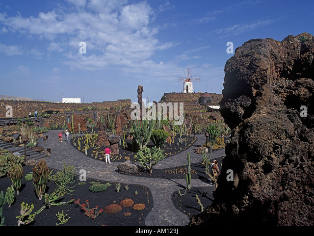 Kakteengarten stock photos kakteengarten stock images for Jardin de cactus lanzarote