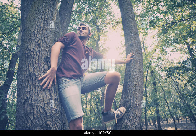 Teenager climbing on the Tree in the forest - Stock Image
