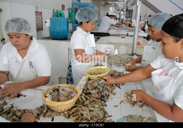 Panama City Panama Ancon Mercado de Mariscos market merchant shrimp seafood business stall local food processing - Stock Image