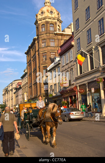 Quebec City Canada horse and buggy ride in old town during the summer - Stock Image