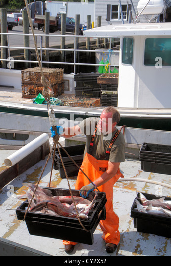 Men working on commercial fishing stock photos men for Commercial fishing jobs