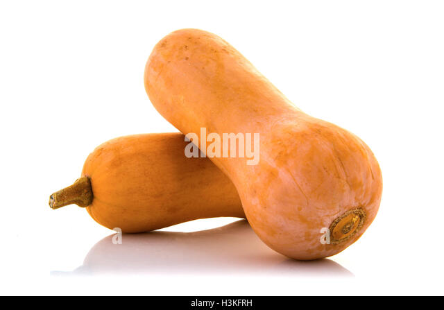 Two fresh whole butternut squash pumpkins on white background - Stock Image