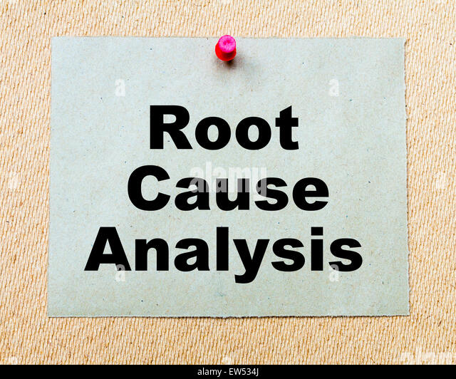 a business analysis of the back to the roots company Investment analysis a bottom-up investor may have found that an industrial company made for a compelling investment a business or financial analysis.