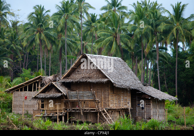 a typical house in the forest, Negros, Philippines - Stock Image